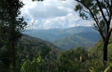 Uitzicht op Laos, China en Myanmar: bergen, bossen, wolken